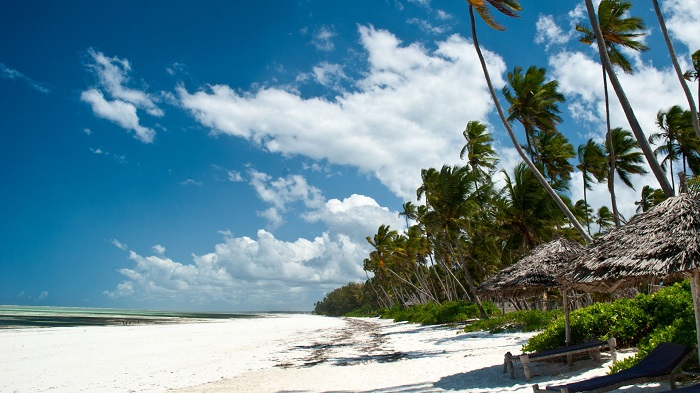 8831143-zanzibar-beaches-pictures