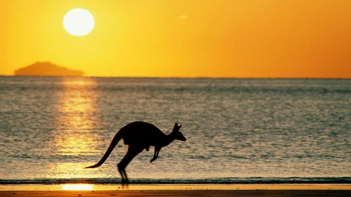 backgrounds-desktop-background-australia-taking-sunset